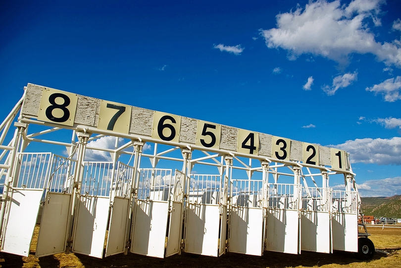 Horse Starting Gate with 8 Stalls